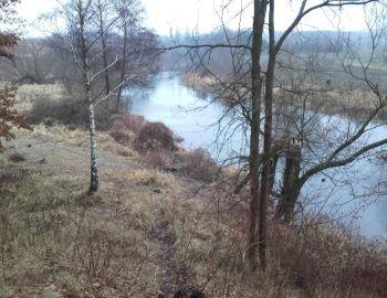 Towarzyski wyjazd nad rzekę Drwęce na trocie [2.01.2017]